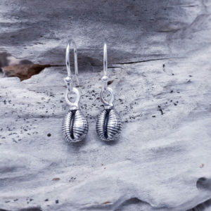Cowrie Shell Grotie Buckie Drop Earrings